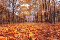 Automne en parc Manoir Kuskovo Lames tombées Jour ensoleillé d'automne photos stock
