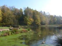 Automne en parc par l'étang Photographie stock