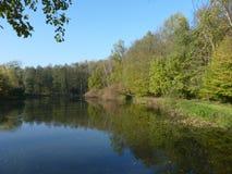 Automne en parc par l'étang Photo libre de droits