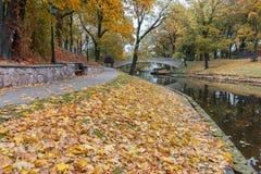 Automne en parc public central de Riga, l'Europe Photo stock