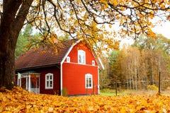 Automne en Suède Images stock