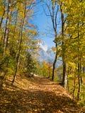 Automne en vallée de montagne Image libre de droits