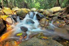Automne et roche de l'eau Images stock