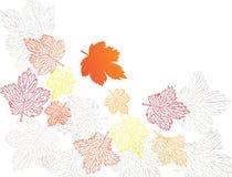 automne fleuri Photo stock