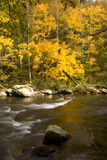 Automne, fleuve de Tellico, N-F cherokee Photographie stock libre de droits