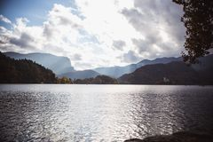 Automne jaune de feuilles au lac Bled en Slovénie en vue d'île photo stock
