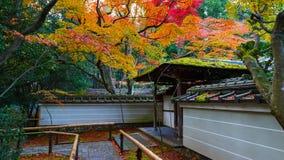 Automne Koto-dans dans à Kyoto, Japa Images stock