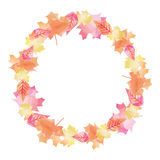 Automne lumineux Autumn Leaves Circle Background 1 d'aquarelle Images libres de droits