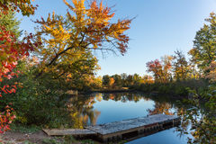 automne Ontario Photographie stock