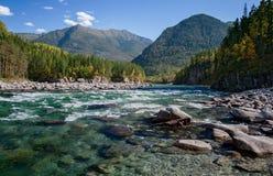 Automne par la rivière Kitoy Images stock
