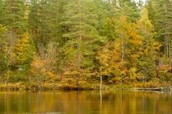 Automne par le lac Photo libre de droits