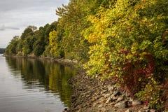 Automne, paysage de chute Arbres avec les feuilles colorées photo stock