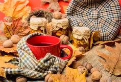Automne pour faire le concept de liste Attaquez la boisson aromatique confortable de thé en écharpe et festins L'atmosphère autom images stock