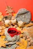 Automne pour faire le concept de liste Attaquez la boisson aromatique confortable de thé en écharpe et festins Tasse de thé entou photo libre de droits