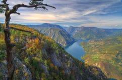 Automne près de lac Perucac, Serbie occidentale Photo libre de droits