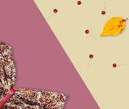 Automne réglé : habillez, de petites pommes et feuille jaune de pomme Configuration plate Photographie stock