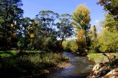 Automne sur la rivière Photo stock