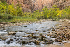 Automne sur la rivière vierge Photos libres de droits