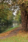 Automne sur le fleuve la Tamise en Angleterre Image libre de droits