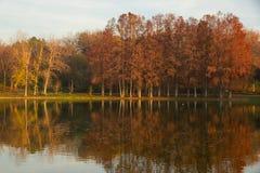Automne sur le soleil de lake Image libre de droits