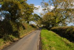 Automne sur le terrain communal de Woodbury, Devon Photos stock
