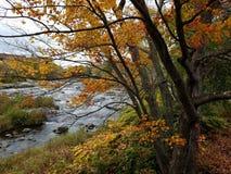 Automne sur une berge de New Hampshire images stock