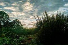 Automne tôt du Vermont photo stock