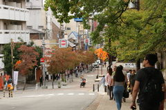 Automne tôt à Nara Image libre de droits