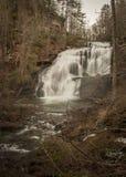 Automnes chauves de rivière, un arrêt le long du Cherohala Skyway, Tennessee photographie stock libre de droits
