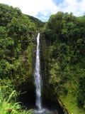Automnes d'Akaka, grande île, Hawaï Photographie stock