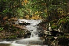 Automnes d'Appalachia Images libres de droits