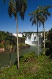 Automnes d'Iguasu, Argentine Brésil Images stock