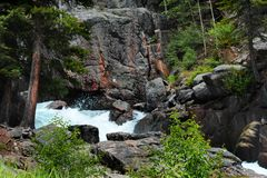 Automnes de approche de crique de lac Images stock