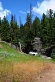 Automnes de approche de crique de lac trail Image libre de droits