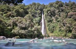 Automnes de crique de tonnerre (Nouvelle-Zélande) image libre de droits
