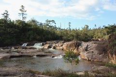 Automnes de fleuve de Macal, Belize Images stock