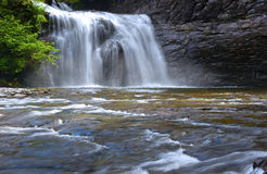 Automnes de fleuve de Trent Photo libre de droits