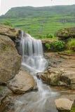 Automnes de Gira, Waghai Image libre de droits