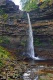 Automnes de Hardraw de parc national de vallées de Yorkshire photos stock