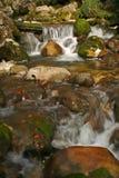 Automnes de l'eau Photo stock