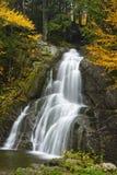 Automnes de l'eau entourés par Autumn Color Image libre de droits
