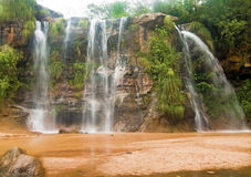 Automnes de Las Cuevas, Bolivie Image libre de droits