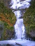 Automnes de Multnomah Image libre de droits
