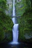 Automnes de Multnomah Photo libre de droits