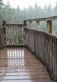 Automnes de Plodda, Glen Affric Nature Reserve, montagnes centrales, Ecosse Cascades de négligence rénovées de plate-forme victor photo libre de droits