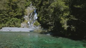 Automnes de rose des vents, passage de Haast, parc national aspirant de Mt, Nouvelle-Zélande clips vidéos