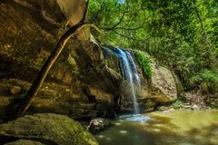 Automnes de sérénité et trou de natation en Buderim Forest Park, Sunshin images libres de droits