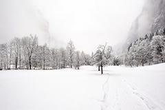 Automnes de Truemmelbach - l'hiver Photos libres de droits