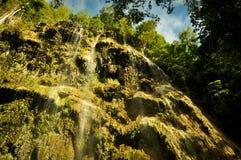 Automnes de Tumalog, Oslob Cebu Images stock