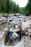 Automnes en bois, le fleuve de montagne Image stock